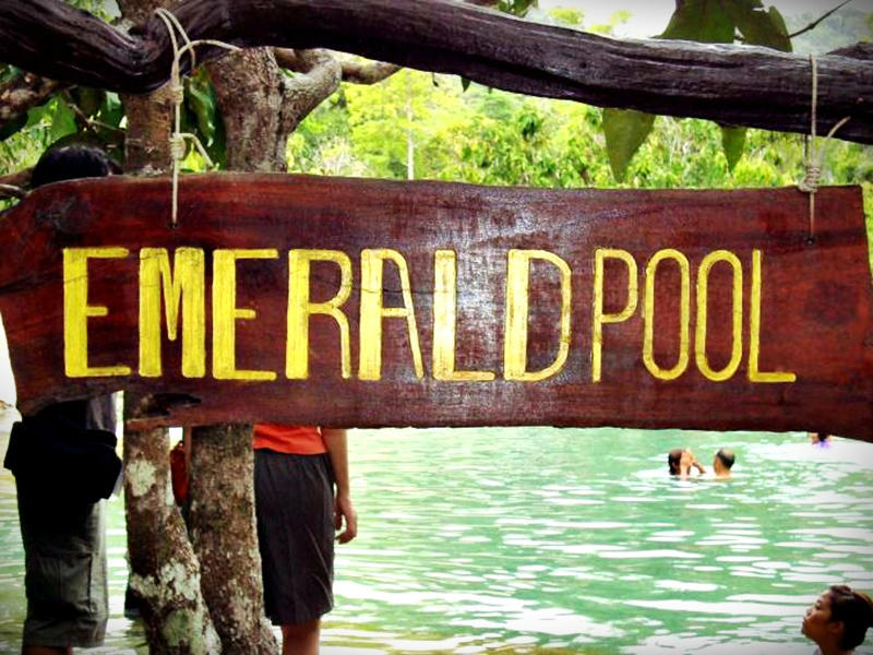 Jungle Tour Hot Spring & Emerald Pond